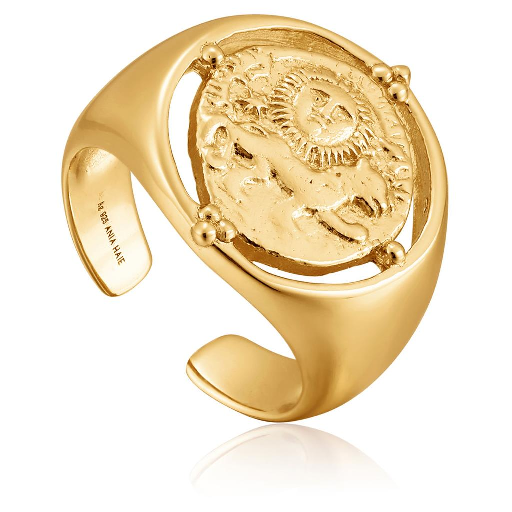ANIA HAIE SELJUKS SIGNET ADJUSTABLE RING 925S